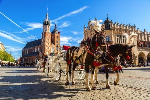 Pferdewagen am Hauptplatz in Krakau