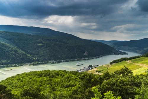 Rhein schlängelt sich zwischen Burg Rheinstein und Assmannshausen