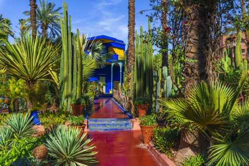Jardin Majorelle - botanischer Garten in Marrakesch, Marokko