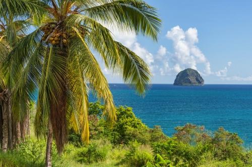 Rocher du Diamant vor Martinique