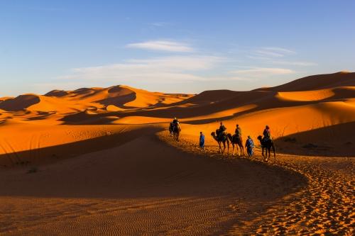 Kamelreiten entlang von Sanddünen zur Sonnenuntergangzeit in der Sahara, Marokko