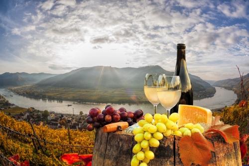 Wachau: das berühmteste Weinbaugebiet Österreichs