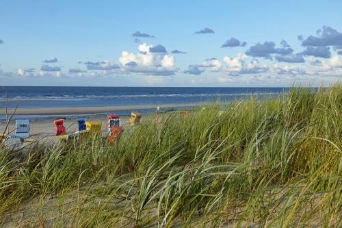 Strandkörbe hinter Dünengras auf der ostfriesischen Insel Langeoog, Deutschland