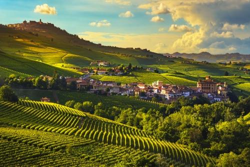 Panorama der Weinberge von Langhe im Piemont, Italien