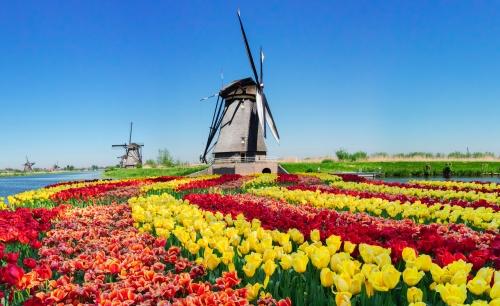 Kinderdijk in Südholland, Niederlande