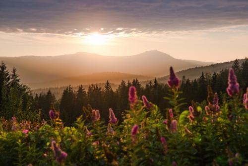 Großer Arber im Bayerischen Wald bei Sonnenuntergang