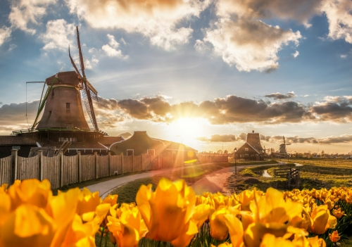 Zaanse Schans in den Niederlanden