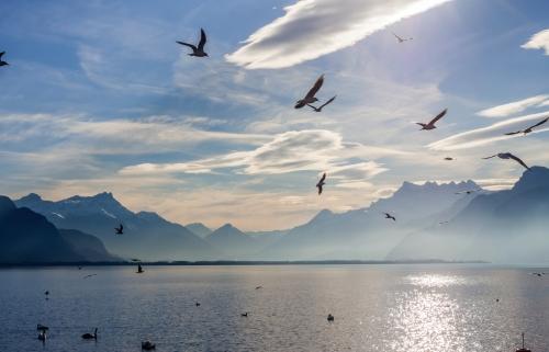 Blick auf die Alpen und den Genfer See
