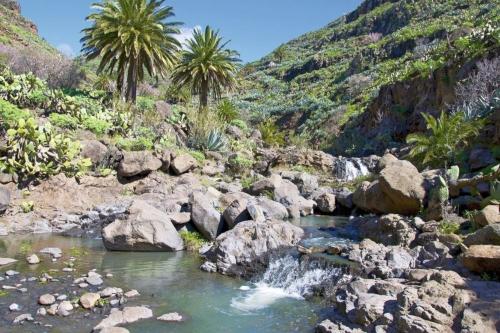 Gebirgsbach auf La Gomera, Kanaren