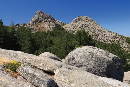 Cime del Limbara, Sardegna